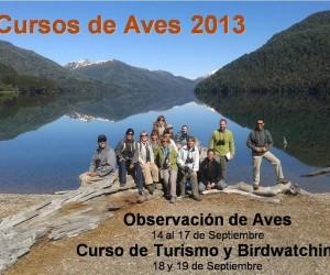 Observacion de aves