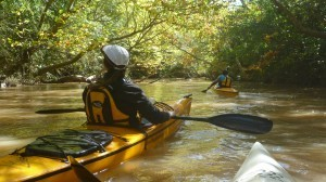 Cursos de Kayak en Buenos Aires